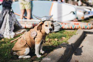 suping_ru_fontanka_SUP_festival-6